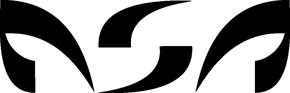 nsa logo bronbestand